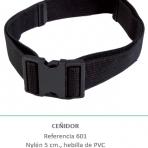 Ceñidor